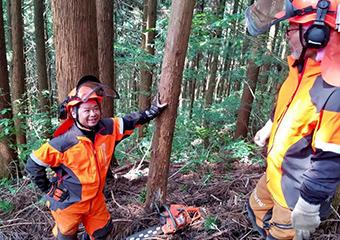 林業で山を守る仕事をしよう画像3