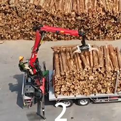 林業のやりがい2画像