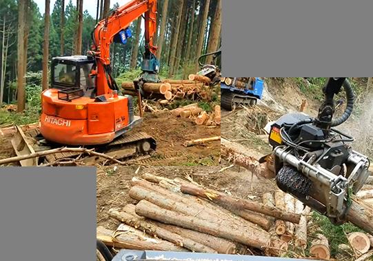 伐採搬出請負画像